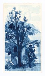 blue-magnolia